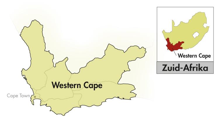 DeMorgenzon DMZ Western-Cape Limited Release Roussanne